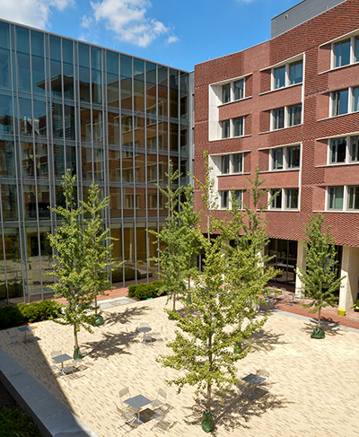 New College House Courtyard