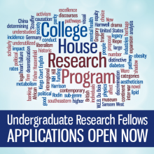 Undergraduate Research Fellows: Applications Open Now